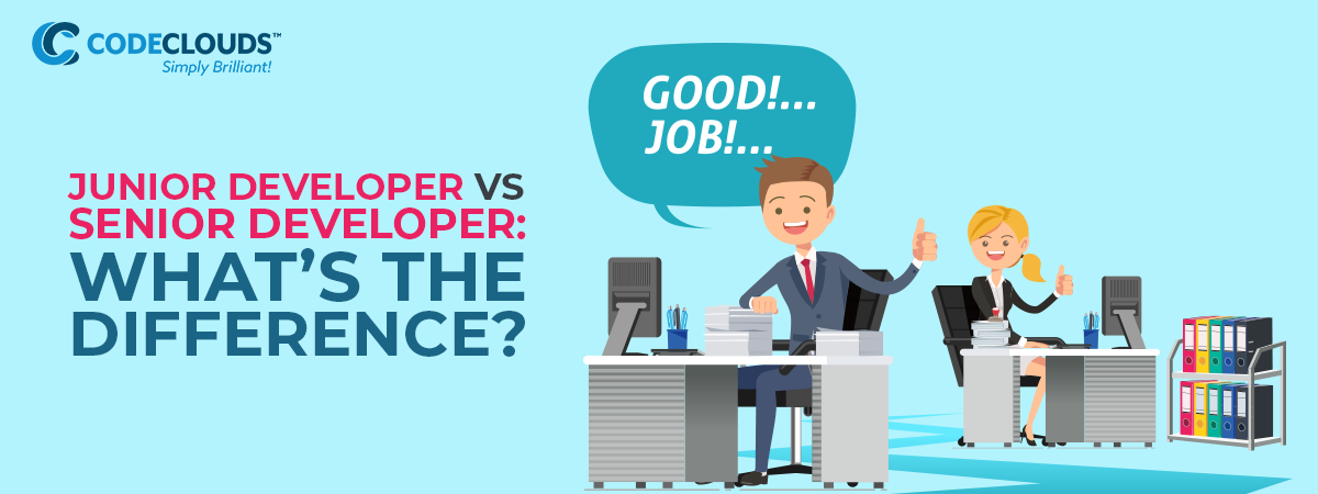 Junior Developer vs Senior Developer: What's the Difference?